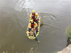 Dog rescued by firefighters in Chester