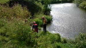 Firefighters assessing cow rescue from riverbank