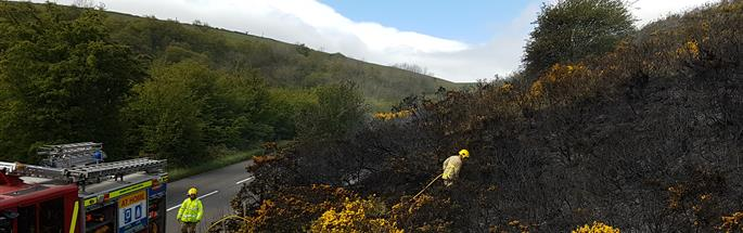 Firefighters dealing with a grass fire
