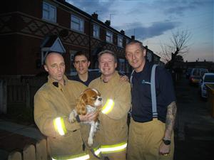 Firefighters with the dog Gabby-Do.