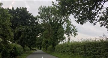 Country road in Cheshire