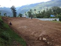 The land where the school will be built