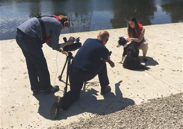 Filming of search and rescue dog Bryn