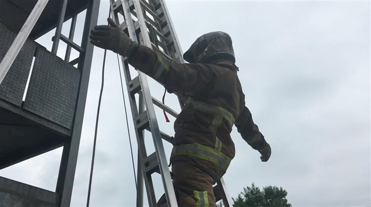 Ladder climb exercise